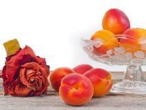 Abricots disposés dans une cuvette images stock
