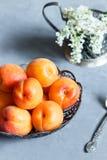 Abricots du plat, fleurs blanches, fond concret image libre de droits