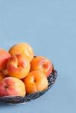 Abricots du plat sur le fond concret photographie stock libre de droits