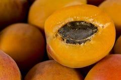 Abricots en gros plan Image libre de droits