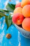 Abricots entiers organiques mûrs frais colorés dans la cuvette en céramique sur la table en bois bleue de jardin, noyau, feuilles Image stock