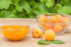Abricots et confiture dans un vase en verre dans le jardin Photo stock
