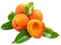 Abricots frais Photo stock