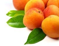 Abricots frais Images stock