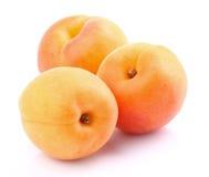 Abricots frais Images libres de droits