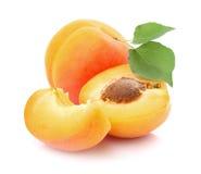 Abricots frais Photos stock
