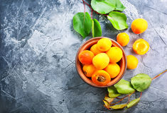 Abricots frais photographie stock