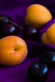 Abricots frais (Farteli, Espagne) et cerises (amoureux, Angleterre) sur un fond en soie pourpre avec l'espace de copie Foyer séle Photo stock