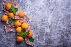 Abricots juteux doux photos libres de droits