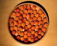 Abricots mûrs des Frances dans un plat en bois images libres de droits