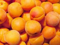 abricots mûrs Images libres de droits