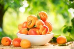 Abricots mûrs sur une table en bois images stock
