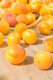 Abricots mûrs sur une table en bois, plan rapproché Photo libre de droits