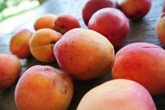 Abricots oranges mûrs sur la table en bois rustique Images libres de droits