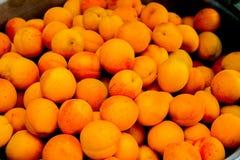 Abricots organiques mûrs avec des feuilles Image libre de droits