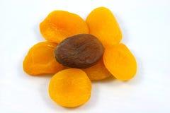 Abricots secs Photographie stock libre de droits