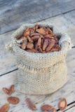 Abricots secs dans un sac Images stock