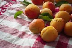 Abricots sur une serviette rustique photographie stock