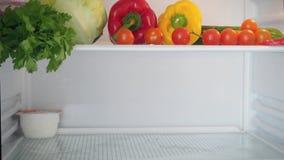 Abriendo la puerta del refrigerador, una mano femenina pone almacen de video