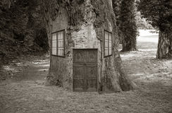 Abriga a árvore, Imagem de Stock