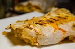 Abrigo cocinado del pollo fotos de archivo