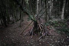 Abrigo da floresta imagem de stock royalty free