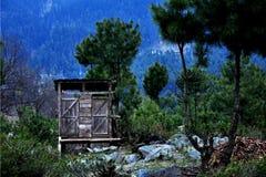 Abrigo da floresta fotos de stock royalty free