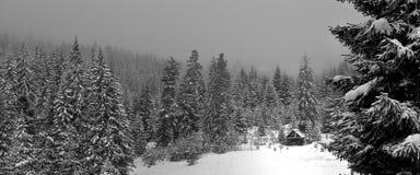 Abrigo de la nieve foto de archivo libre de regalías