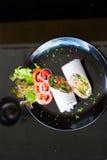 Abrigo de los salmones Imagen de archivo libre de regalías