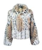 Abrigo de pieles del leopardo Foto de archivo