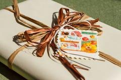 Abrigo de regalo Imagen de archivo libre de regalías