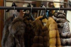 Abrigos de pieles Foto de archivo libre de regalías