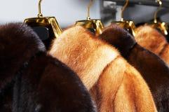 Abrigos de pieles femeninos ricos fotografía de archivo libre de regalías