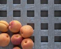 Abrikoos, abrikozen Stock Foto