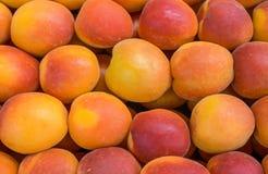 abrikozen Royalty-vrije Stock Afbeeldingen