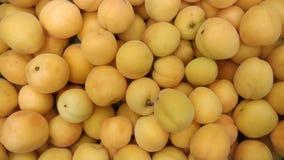 Abrikozen bij de kruidenierswinkelopslag die worden opgesteld stock foto's