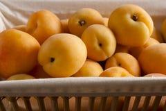 Abrikozen in een Mand stock afbeelding