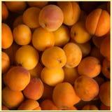 Abrikozen in een mand Stock Afbeeldingen