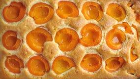 Abrikozen eigengemaakte cake Stock Fotografie