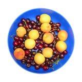 Abrikozen en kersen op de blauwe schotel. Stock Afbeelding