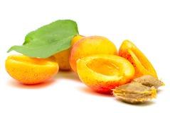 Abrikozenfruit Stock Afbeeldingen