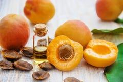 Abrikozenolie in een kleine kruik Selectieve nadruk stock afbeeldingen
