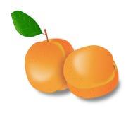 Abrikozenvruchten Royalty-vrije Stock Foto's