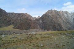 abril em Altai  Fotografia de Stock