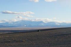 abril em Altai  Fotografia de Stock Royalty Free