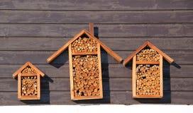 Abris pour des insectes Images libres de droits