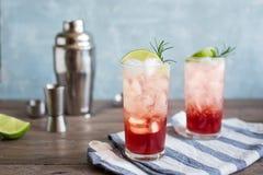 Abrunheiro Gin Fizz Cocktail imagem de stock