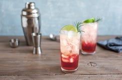 Abrunheiro Gin Fizz Cocktail foto de stock royalty free