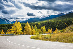 Abrupt turn of the road. Among the autumn wood. The magnificent Rocky Mountains in Canada. The warm Indian summer in October stock images
