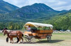 Abruzzi nationalpark Arkivbilder